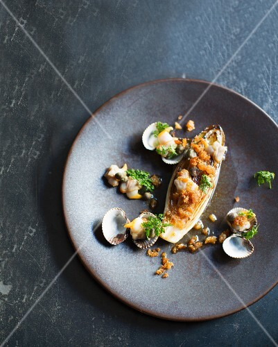 Chicory with clams, restaurant 'Septime', Paris