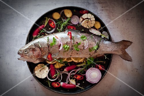 Larded fish with ingredients on a round baking tray