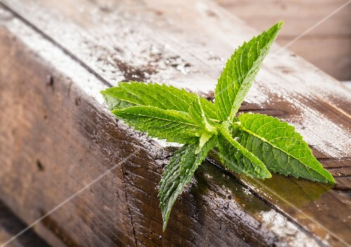 Fresh mint on a wooden crate