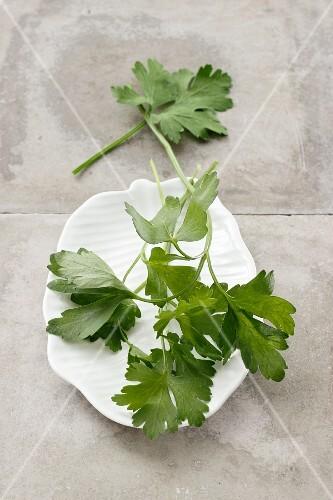 Fresh, flat-leaf parsley on a plate