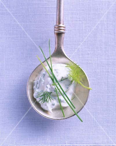 A quark dip with dill and chives on a silver spoon