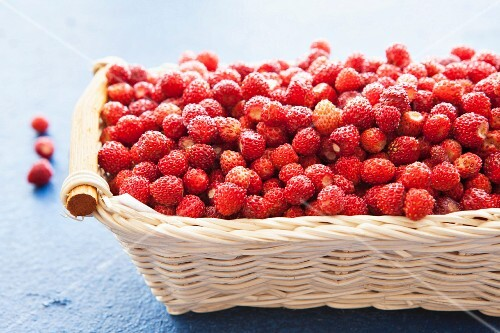 A basket of wild strawberries