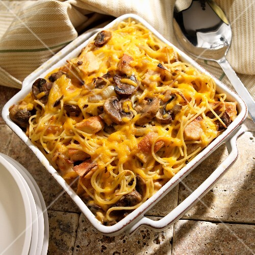 Chicken tetrazzini with pasta, cheese and mushrooms
