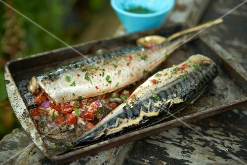 Marinated mackerel on a baking tray