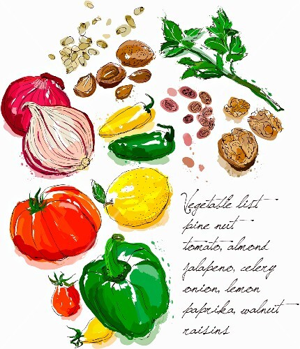Vegetables and nuts (illustration)