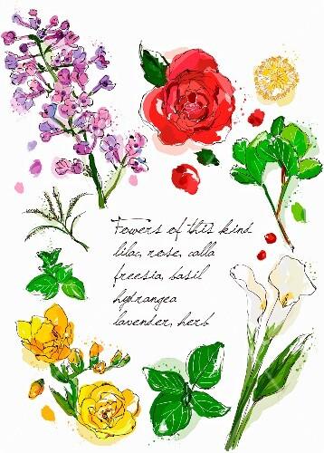 An arrangement of various flowers (illustration)