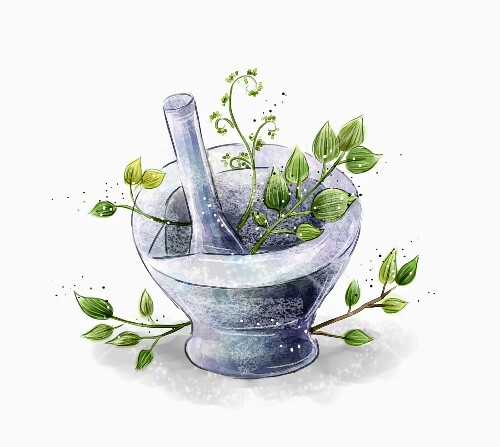 Herbs in a stone mortar (illustration)