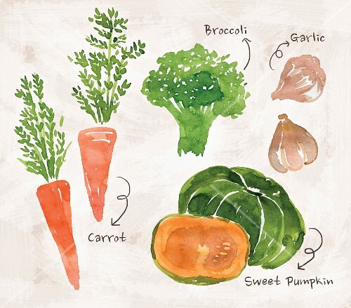 An arrangement of vegetables with carrots, broccoli, garlic and pumpkin (illustration)