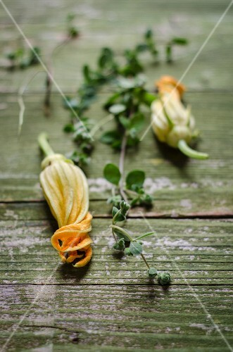 Courgette flowers and marjoram