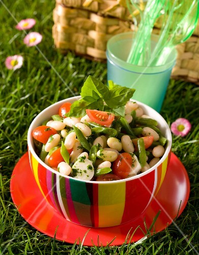 Bean salad with tomatoes, mozzarella and pistou on plate in the grass