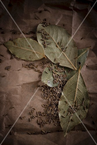 Caraway seeds and bay leaves