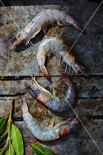 Fresh prawns with bay leaves on a baking tray