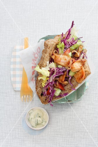 Turkey donner kebab with red cabbage