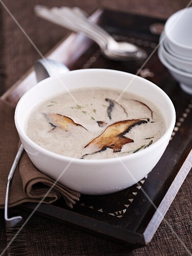 Cream of Portobello mushroom soup on a tray