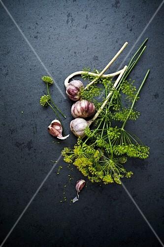 An arrangement of dill flowers with garlic bulbs (seen from above)