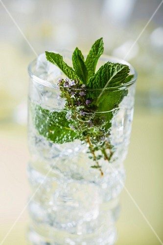 A gin and tonice with ice cubes, mint and thyme