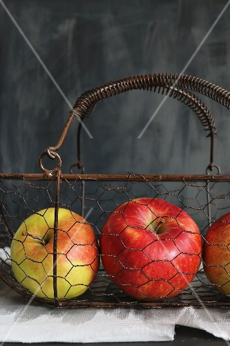 Apples in a vintage wire basket against a grey background
