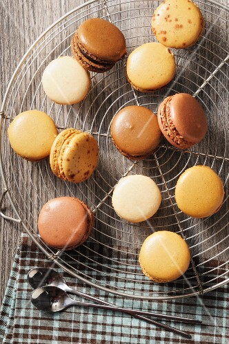 Macaroons in different shades of brown