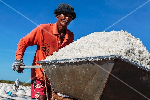 Sea salt being harvested in Samut Sakhon, Thailand