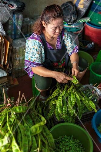 A woman shelling petai beans at a market in Bangkok, Thailand