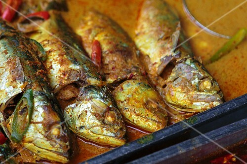 Mackerel in curry sauce (Thailand)