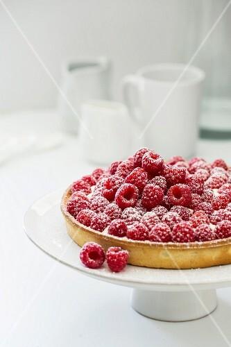 Raspberry tart with vanilla cream and icing sugar