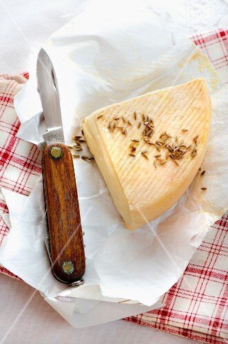 A slice of Alsatian Munster cheese