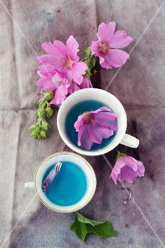 Mallow tea made with wild mallows