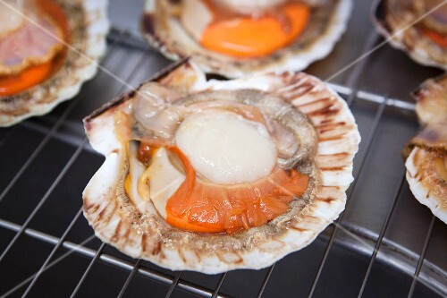 Scallops on a grill rack