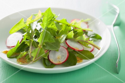 Dandelion salad with radishes