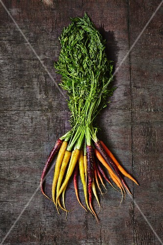 A bunch of colourful carrots