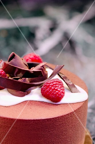 Raspberry and chocolate mousse with cream