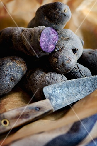 Purple potatoes on a piece of brown paper with an old knife