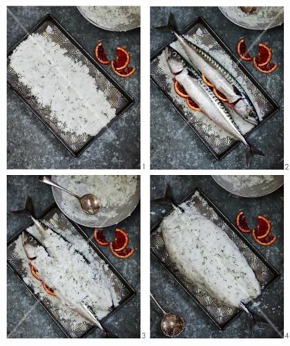 Mackerel in salt dough being made