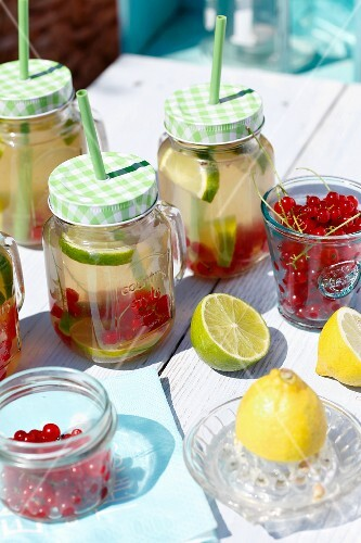 Lemonade with limes, lemons and redcurrants