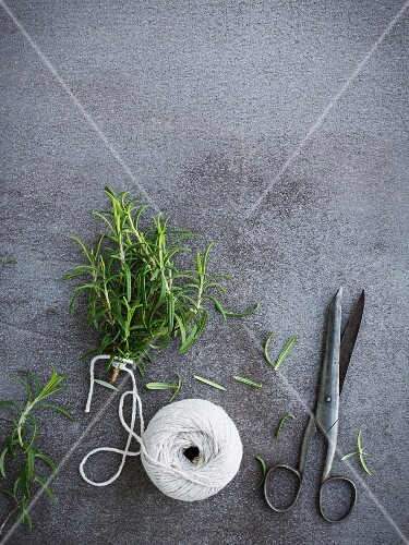 Rosemary sprigs being tied into a bundle for drying