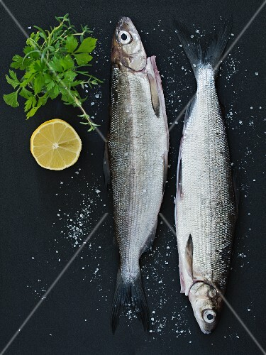 Two fresh fish with coarse salt, herbs and lemons on a dark surface