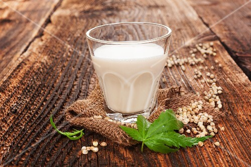 A glass of hemp milk