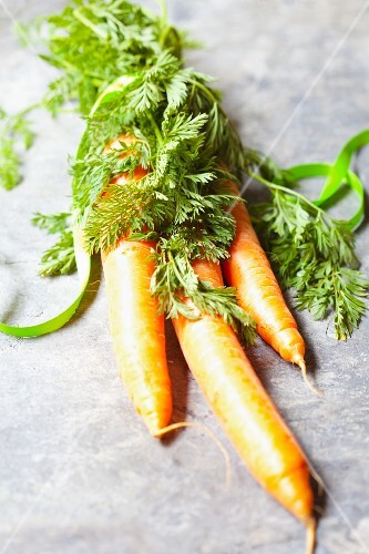 Three fresh carrots tied together at the leaves