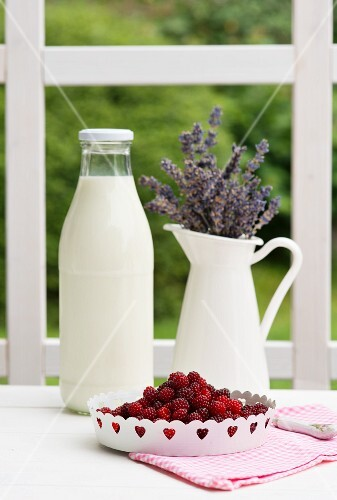 A bottle of milk, a jug of lavender and fresh berries on a garden table