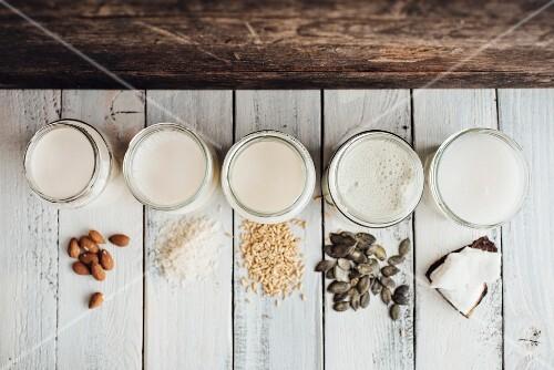 Various types of vegan milk in jars next to almonds, rice, oats, pumpkin seeds and coconut