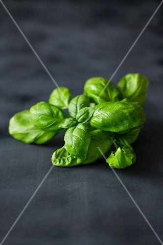 Fresh basil on a dark surface