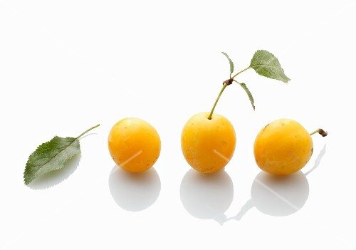 Three yellow plums on a white surface