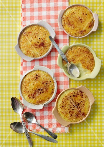 Crema Catalana in dishes