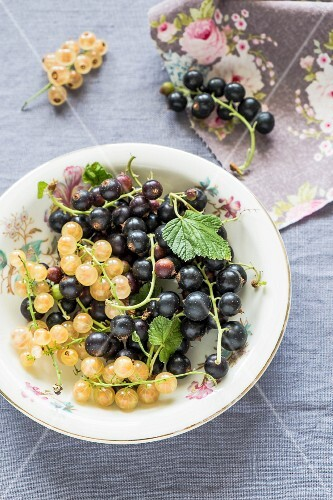 Blackcurrants and whitecurrants on a plate