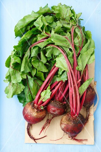 Young beetroots on a piece of paper