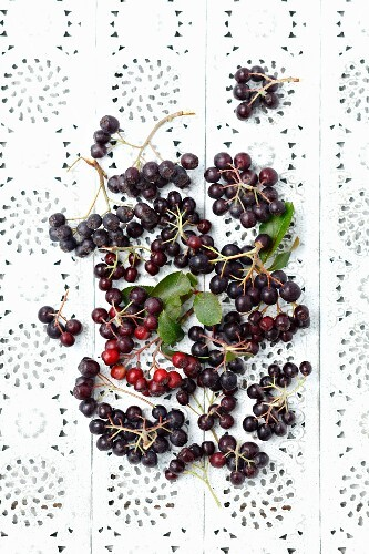 Aronia berries on a lace surface