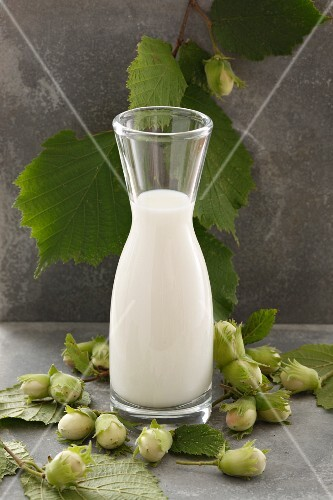 Hazelnut milk and green hazelnuts