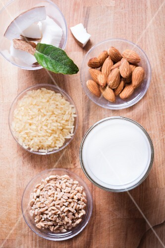 Zutaten für vegane Milch: Mandeln, Reis, Dinkel und Kokosnuss