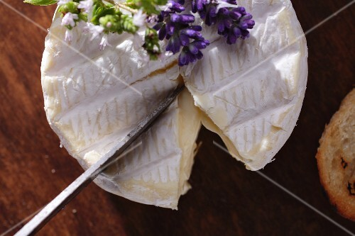 Camembert being sliced (seen from above)